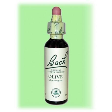 Equilibre émotionnel fleur de bach Olive (Olivier)- 20 ml