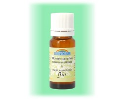 Huile essentielle Romarin Camphré - rosmarinus officinalis 10 ml