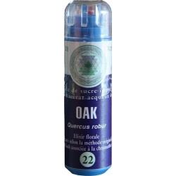 Equilibre émotionnel fleur de bach sans alcool Oak (n°22) force, acceptation de sa situation