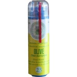 Equilibre émotionnel fleur de bach sans alcool Olive (n°23) énergie retrouvée, réveille les intérêts