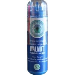 Equilibre émotionnel fleur de bach sans alcool Walnut (n°33) apporte constance et protection