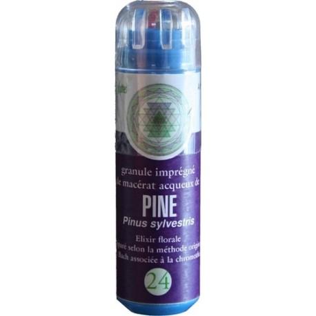 Equilibre émotionnel fleur de bach sans alcool Pine (n°24) aide à déculpabiliser